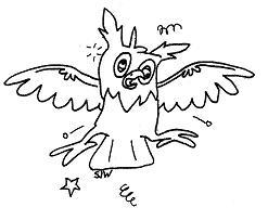 Flustered Owl