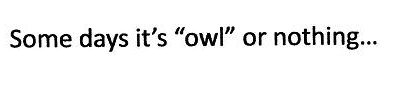 Owl or Nothing
